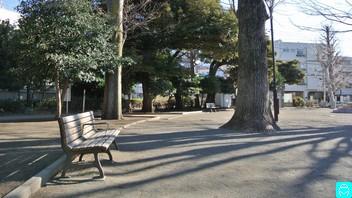 世田谷丸山公園 3