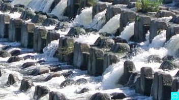 多摩川 4