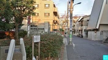 泉こぶし公園 14