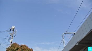 武蔵野フィッシング センター 3