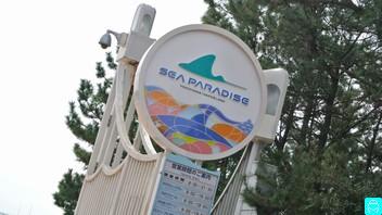 八景島シー パラダイス 1
