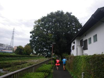 20161030f