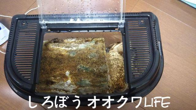 WaterMark_2018-12-01-13-49-35