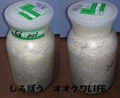 菌糸ボトル2
