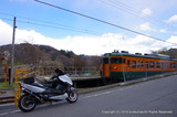 IMGP3608