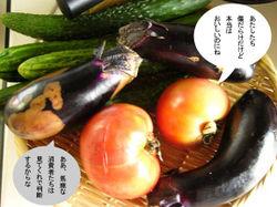 ぶさいく野菜は美味い