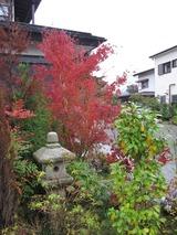 2013年11月箱根仙石原温泉 067