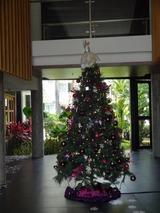 2013年12月バリ島  020