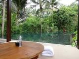 2013年12月バリ島  387