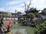 2011年上海 196