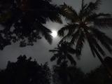 2013年12月バリ島  341