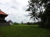 2013年12月バリ島  397