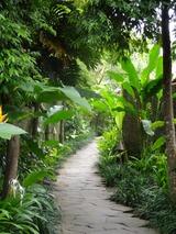 2013年12月バリ島  294