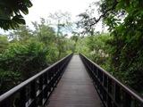 2013年12月バリ島  378