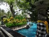 2013年12月バリ島  207