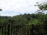 2013年12月バリ島  383