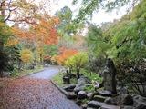 2013年11月箱根仙石原温泉 059