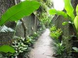 2013年12月バリ島  377