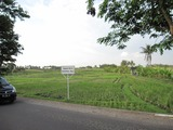 2012年10月バリ島7日間 243