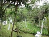 2013年12月バリ島  382