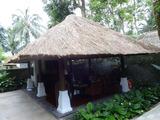 2013年12月バリ島  231