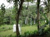 2013年12月バリ島  385