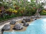 2013年12月バリ島  043