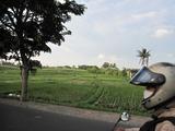 2012年10月バリ島7日間 244