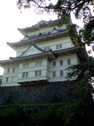 小田原城天守閣と梅の木