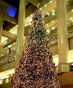 クリスマスツリー@横浜ランドマークタワー