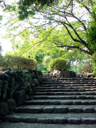 小田原城銅門から本丸広場への道