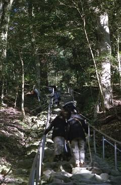 修業のような階段@熊野磨崖仏