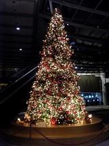 香港上海銀行のクリスマスツリー