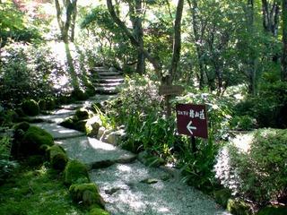 箱根茶寮椿山荘・貴賓館への小径