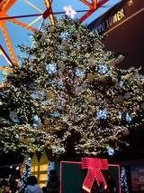 クリスマスツリー@東京タワー
