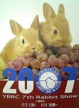 YBRC 7th Rabbit Show ポスター