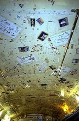 サブマリンドッグ1階天井