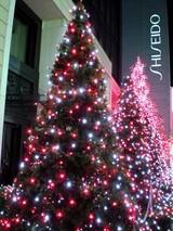 銀座並木通りのクリスマス一場面