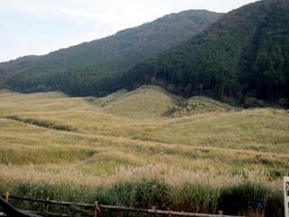 秋の箱根仙石原