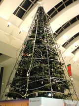 クリスマスツリー@クイーンズスクエア