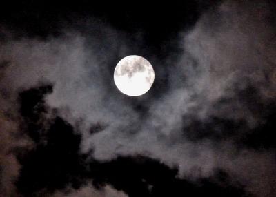 19十六夜スーパームーン 029 (1280x916)