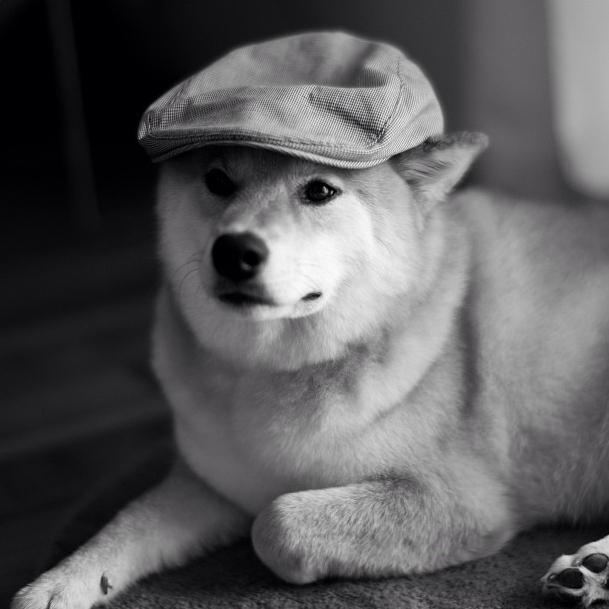 帽子をかぶったまるちゃん。