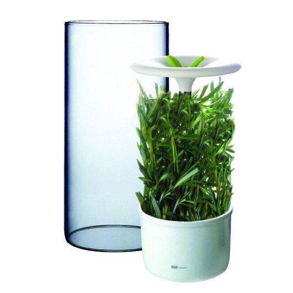 fresh-herb-keeper-01-copy-600x600