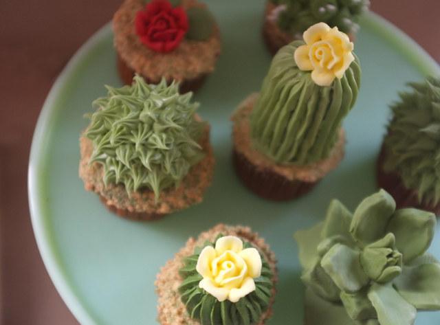 cacti-cupcakes-2