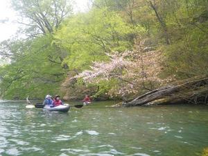 十和田湖_kayak
