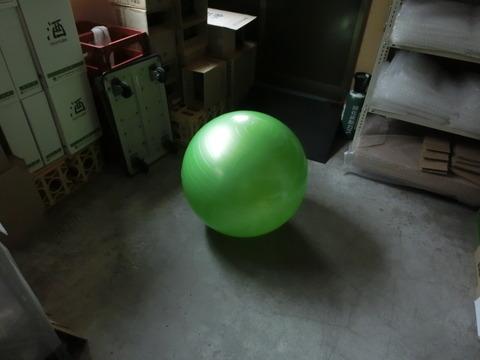 CIMG4982