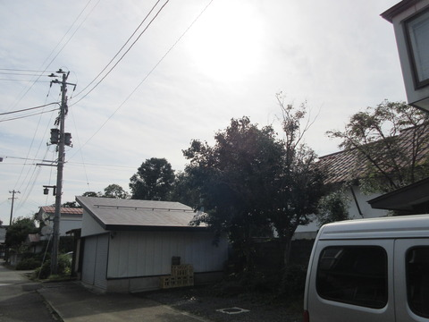 IMG_9614