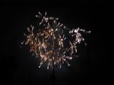 大曲の花火