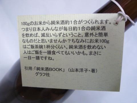 P1110794