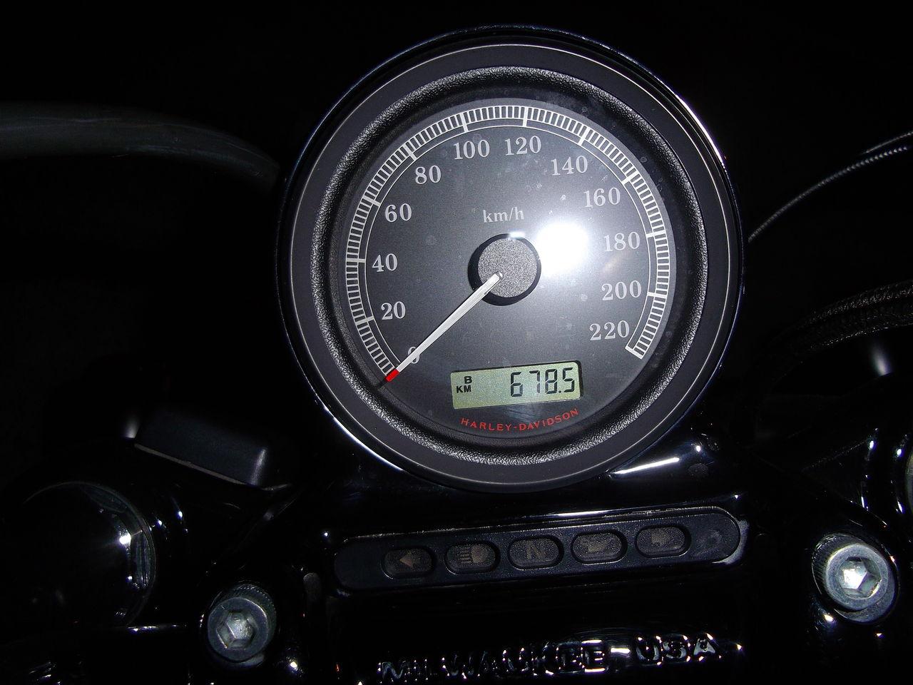 IMGP1505